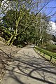 Chemin en pente (26056085090).jpg