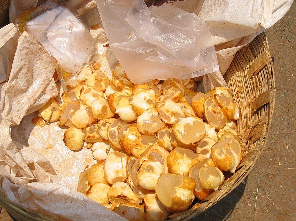 Chestnut in Guntur