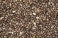 Chia Seeds macro 2.jpg