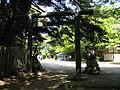 Chihaya Castle2.jpg