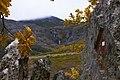 Chorreras - panoramio (1).jpg