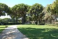 Cimitero militare Terdesco Pomezia 2011 by-RaBoe-007.jpg