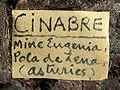 Cinnabar-tmix07-160b.jpg