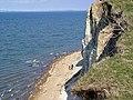 Cliffs on Fur - panoramio.jpg