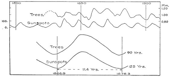 Climatic Cycles and Tree-Growth Fig 25.jpg