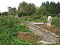 Clonmelsh Church and graveyard - geograph.org.uk - 571024.jpg
