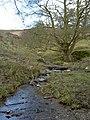 Clwyd Tributary Stream. - geograph.org.uk - 760309.jpg