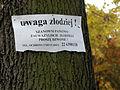 Cmentarz Wojskowy na Powązkach (243).JPG