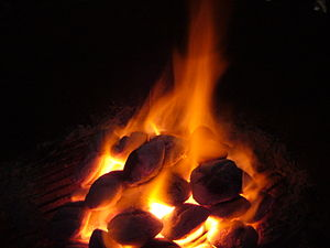 Solid fuel - A fire made of charcoal briquettes