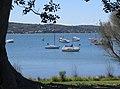 Cockle Bay.jpg