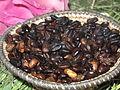 Coffee Beans (Ethiopia).JPG
