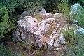 Coll de Manrella 2014 07 25 04 M8.jpg