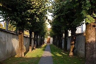 Ascona - Collegio Papio grounds