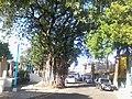 Colonia Santa Lucia, San Salvador, El Salvador - panoramio (18).jpg