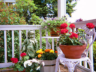 Container garden practice of growing plants exclusively in containers