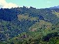 Cordillera central desde edif. Montichelo (14981177198).jpg