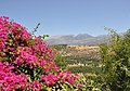 Crete Landscape R02.jpg