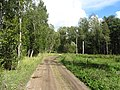 Dūkšto sen., Lithuania - panoramio (38).jpg