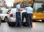 Danish police arrest.jpg