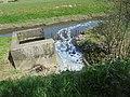 De Mandel nabij het waterzuiveringsstation - Ingelmunster (1).jpg