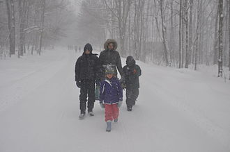 February 2016 North American winter storm - Blizzard in Pennsylvania.