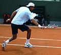 Del Potro Roland Garros 2009 2.jpg
