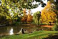 Der Bad Mergentheimer Kurpark im Herbst. 03.jpg
