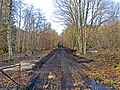 Dismantled Railway Line west of Dalhonzie - geograph.org.uk - 660061.jpg