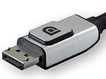 DisplayPort-rid.jpg