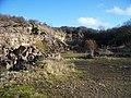 Disused quarry - geograph.org.uk - 1589804.jpg
