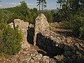Dolmens des Adrets n4.jpg
