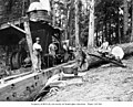 Donkey engine and crew, with gas powered saw used for cutting wood for fuel, Wynooche Timber Company, near Montesano, ca 1921 (KINSEY 1589).jpeg