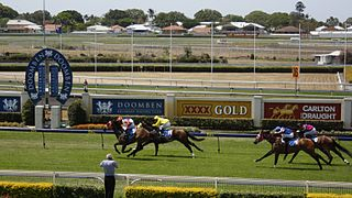 Thoroughbred racing in Australia