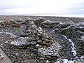 Dr. Geebers, the Pebble Man's Amroth Sculpture - geograph.org.uk - 1627754.jpg