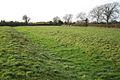 Drainage channel, field north of Riverside Farm - geograph.org.uk - 1618355.jpg