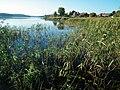 Drawno Dubie Lake (Drawno) (1).jpg