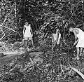 Drie jongens bij een blootgelegd graf op de voormalige Jodensavanna in Suriname, Bestanddeelnr 252-6467.jpg