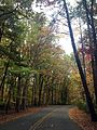 Drive into Claytor Lake State Park (15650516362).jpg
