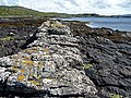 Dyke on the east coast of Loch Dunvegan - geograph.org.uk - 910430.jpg