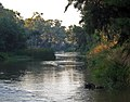 Early morning Lachlan RIver (3380006064).jpg