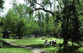 Cooper Park. Bellevue Hill ...