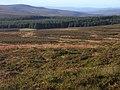 East Kielder Moor - geograph.org.uk - 1546725.jpg