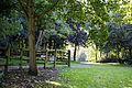 East from Horse Pond Little Easton Essex England 1.jpg