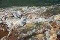 Ecumes sur la plage (8147532559).jpg