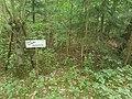 Ein Waldweg am Wieselberg bei Tauberbischofsheim-Dittwar 01.jpg