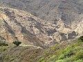 El camino a la Playa de la Caleta - panoramio.jpg