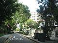 Emerald Hill 4.JPG
