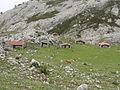 En los alrededores de los Lagos de Covadonga (Picos de Europa, Asturias, España) 01.JPG