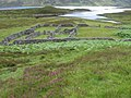 Enclosures by the head of Loch Errochty - geograph.org.uk - 496419.jpg