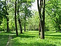 Englischer Garten GO-1.jpg